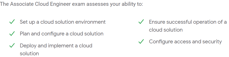 An Associate Cloud Engineer Can Do