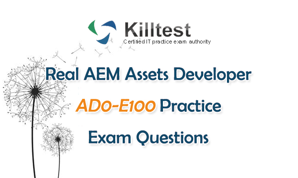 Real AD0-E100 Practice Exam Questions
